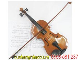hoc-violin