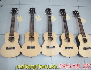 kich-thuoc-cua-dan-ukulele-nhu-the-nao