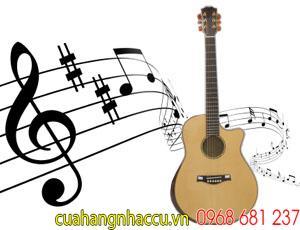 lop-day-dan-guitar-tot-nhat-o-go-vap